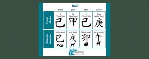 thème BaZi : troncs et branches